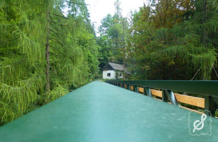 Die Gosauzwangbrücke