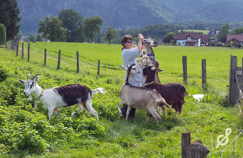 Der Bauernhof als Herzensangelegenheit